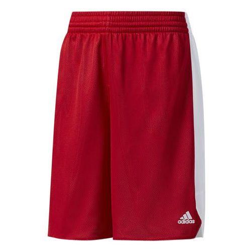 Spodenki koszykarskie - cd8653 marki Adidas