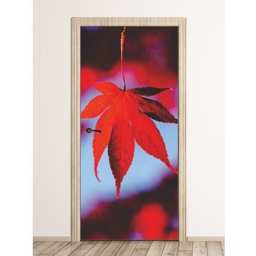 Wally - piękno dekoracji Fototapeta na drzwi czerwony liść fp 6078