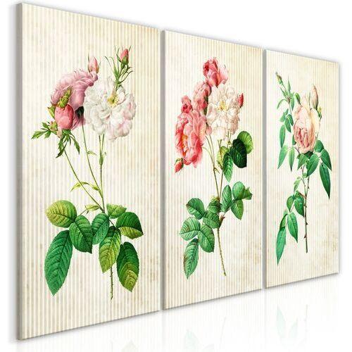 Obraz - kwiatowe trio (kolekcja) marki Artgeist