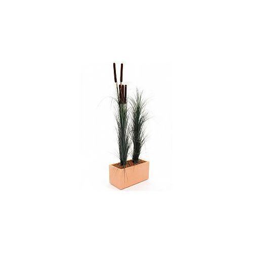 Europalms Reed grass with cattail, dark-green,152cm , Sztuczna trawa