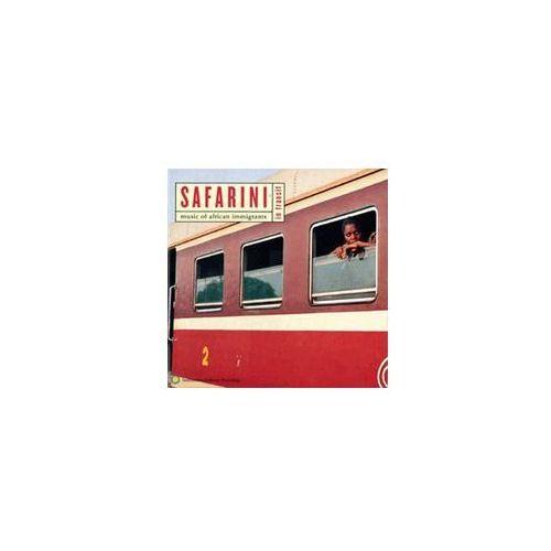 Safarini In Transit Music