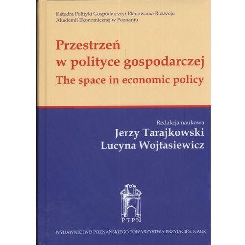 Przestrzeń w polityce gospodarczej, oprawa twarda