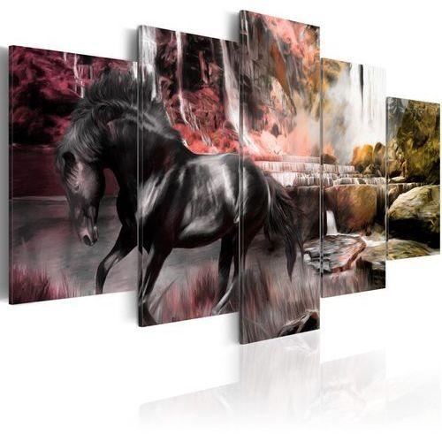 Obraz - Czarny koń na tle karmazynowego nieba