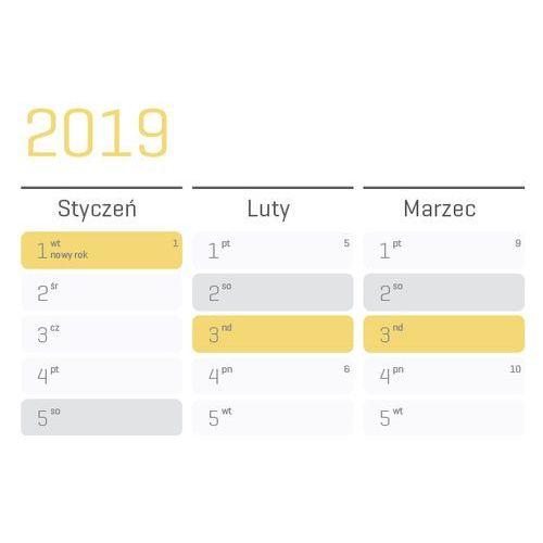 Planer na ścianę 2019 papierowy suchościeralny 84x59 a1 marki Grupavnm.pl