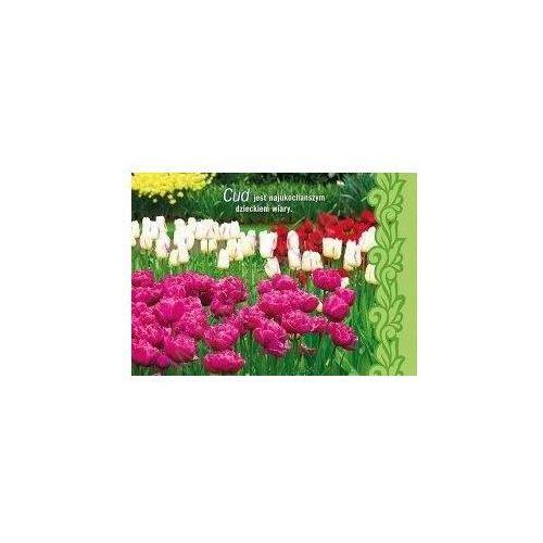 Kartka tulipan - cud wyprodukowany przez Edycja św. pawła