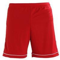 adidas Performance SQUAD Krótkie spodenki sportowe powred/white, kolor czerwony