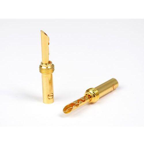Wireworld gold banana set screw 10ga (no shell) - wtyki bananowe