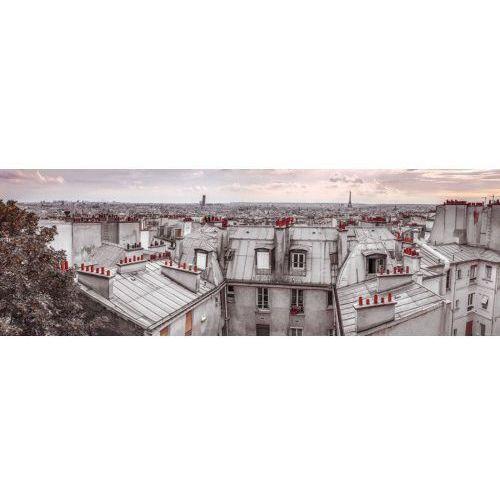 Paryż Dachy Miasta Assaf Frank - plakat