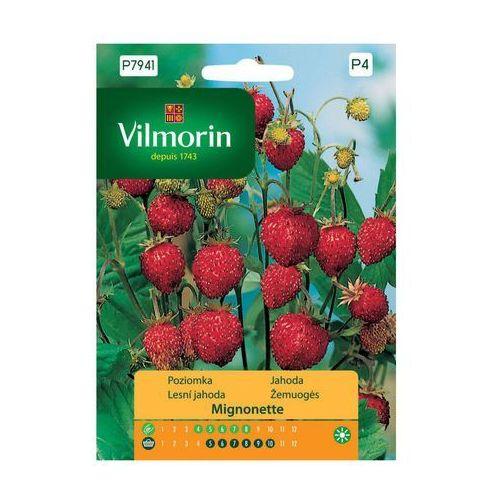 Poziomka MIGNONETTE nasiona tradycyjne 0.2 g VILMORIN (5907617323155)