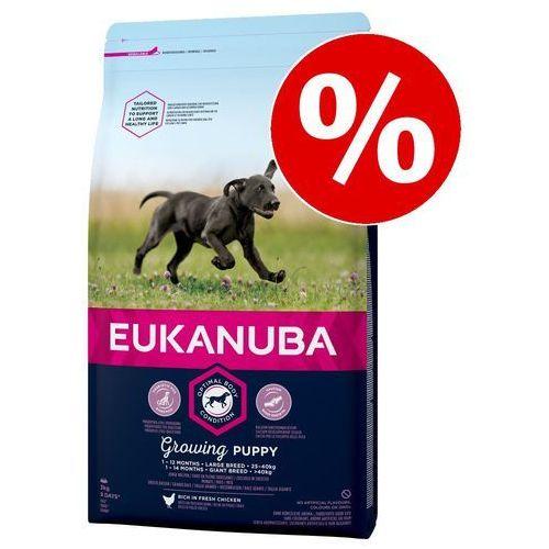 EUKANUBA Puppy & Junior Lamb Rice All Breeds 12kg- natychmiastowa wysyłka, ponad 4000 punktów odbioru!, 3278
