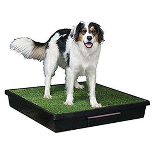 Przenośne WC dla psa rasy większej wyłożone sztuczną trawą