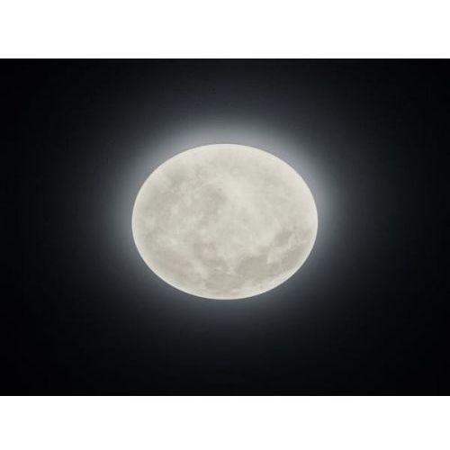 Lunar plafon 627514000 marki Trio