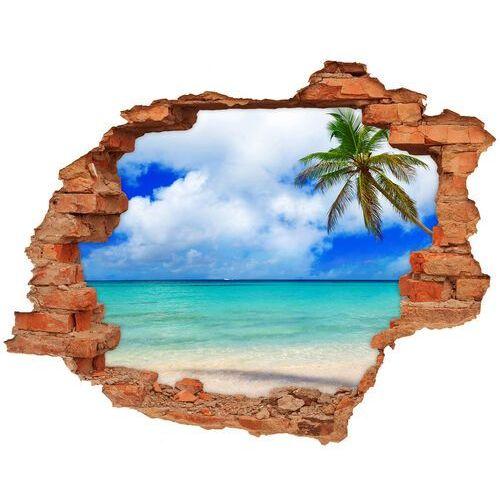 Wallmuralia.pl Dziura 3d w ścianie naklejka karaiby plaża