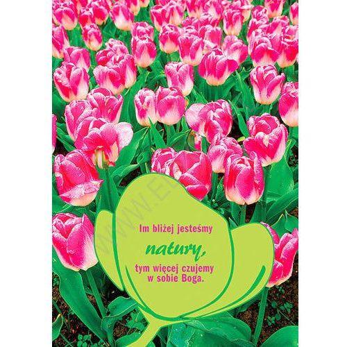 Edycja św. pawła Kartka tulipan - natura