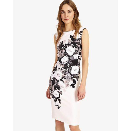 Phase Eight Eleanor Dress (5057122049818)