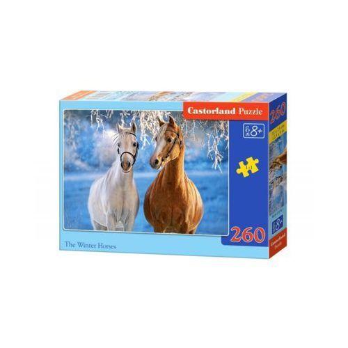 260 elementów konie zima marki Castor
