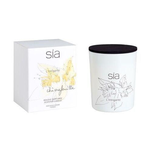 Świeca zapachowa SIA BOTANIQUE – 8,5 × 10 cm (śr. × wys.) – szkło – zapach wiciokrzew – kolor pomarańczowy