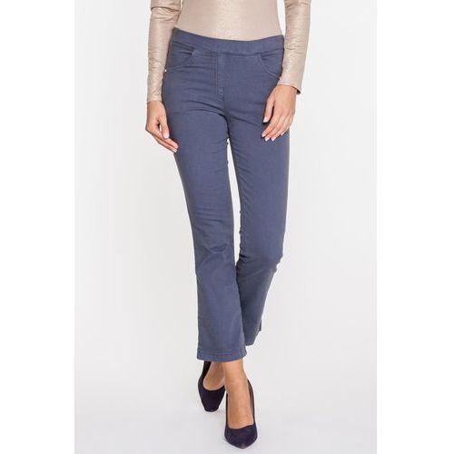 Anataka Klasyczne spodnie dżinsowe w popielatym kolorze -