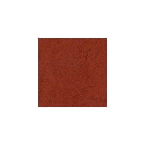Retro image Pigment kremer - czerwień żelazowa hematyt 48600