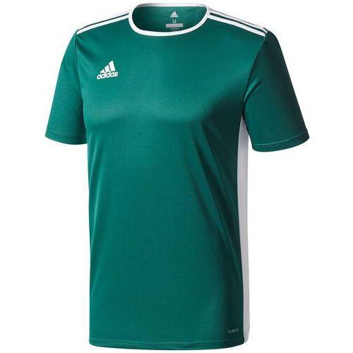 Koszulka dla dzieci adidas Entrada 18 Jersey JUNIOR zielona CD8358/CE9563, CD8358/CE9563