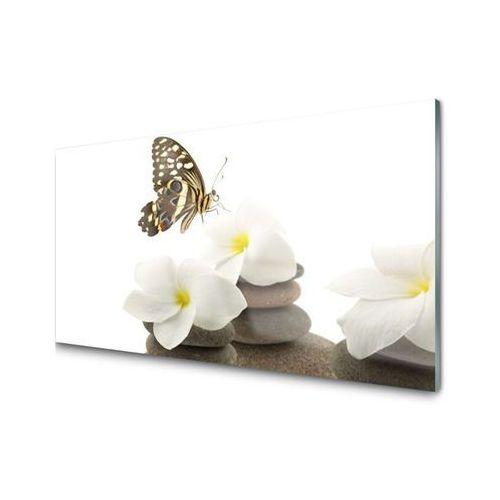 Obraz Akrylowy Motyl Kwiat Kamienie Roślina