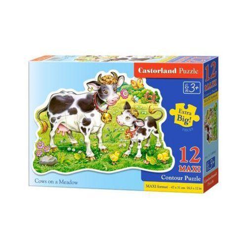 Castor 12 maxi krowy na łące (5904438120062)