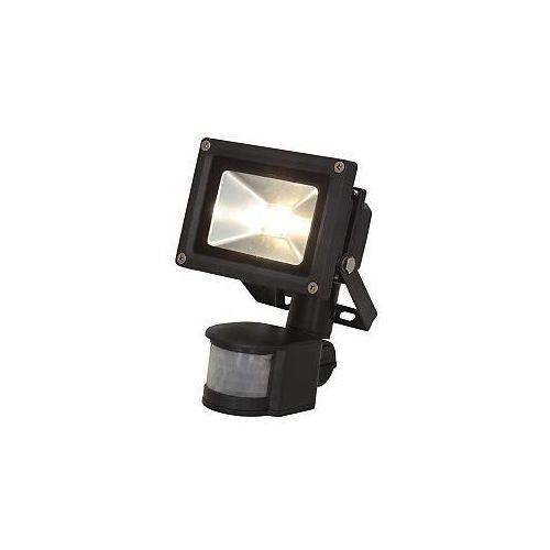 Ibiza Light LEDFLOOD-10WH-MD, naświetlacz LED - sprawdź w wybranym sklepie