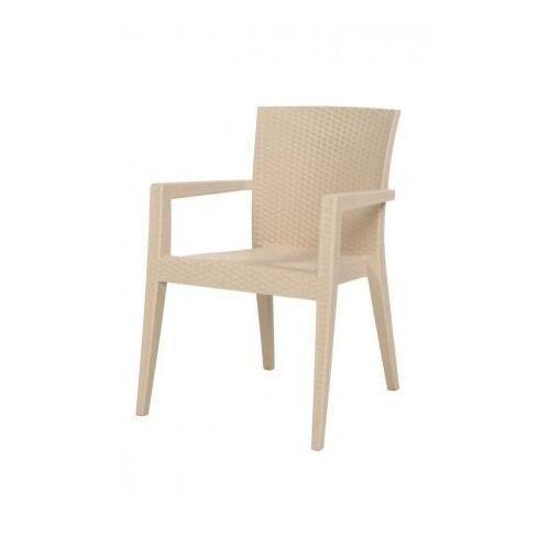 Krzesło do ogródków piwnych   cappuccino   600x570x(H)850 mm