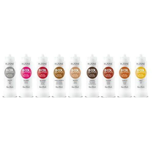 RENEE BLANCHE H-Zone B.COL Maska koloryzująca do włosów Melograno Granat 300 ml (8006569715555)
