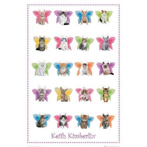 Gb Keith kimberlin kotki ze skrzydełkami motyli - plakat, kategoria: plakaty