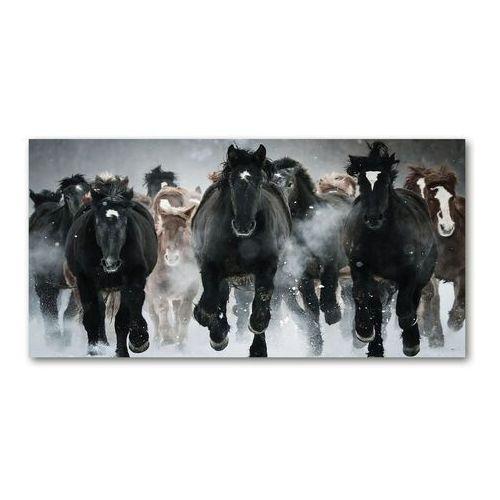 Fotoobraz na ścianę szklany Konie w galopie