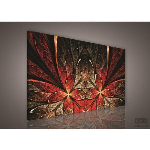 Obraz Czerwono – Brązowe abstrakcyjne wzory PP224O1