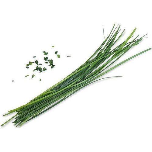 Véritable - Smaki Azji - wkład nasienny - czosnek bulwiasty (do doniczek autonomicznych)