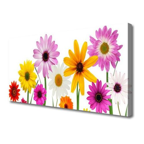 Tulup.pl Obraz canvas kolorowe kwiaty natura