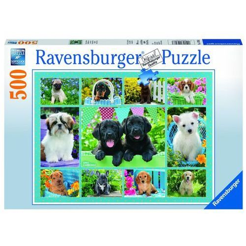 Puzzle 500 Ładne pieski - Ravensburger