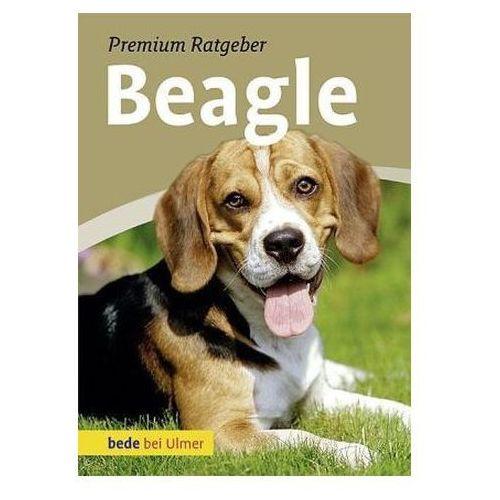 Annette Schmitt - Beagle