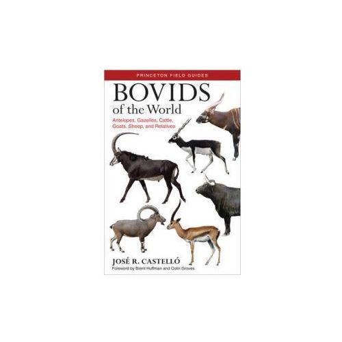Bovids of the World, Castello, Jose R.