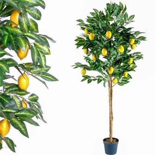 Plantasia ® Sztuczne drzewo cytryna kwiaty drzewko dekoracja - 185 cm
