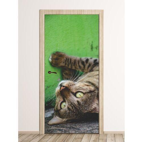 Wally - piękno dekoracji Fototapeta na drzwi bury dziki kot fp 6170