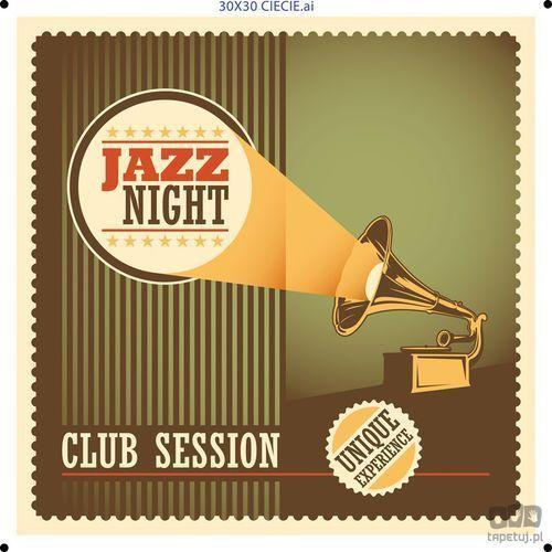 Obraz jazz pt012t1 marki Consalnet