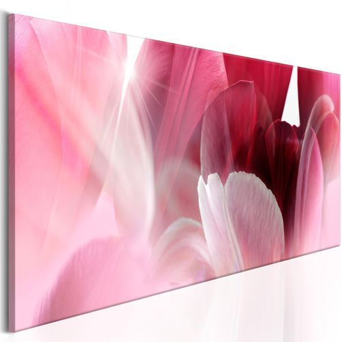 Obraz - kwiaty: różowe tulipany marki Artgeist