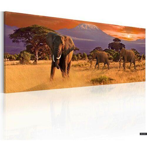Selsey obraz - marsz afrykańskich słoni 120x40 cm (5903025014692)