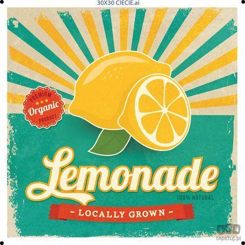 Obraz lemonade ptd080t1 marki Consalnet