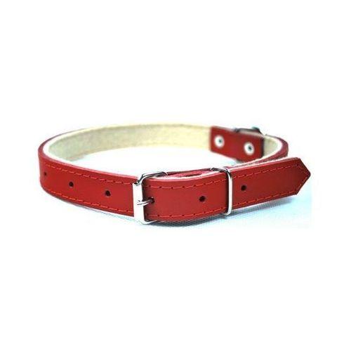 Chaba obroża skórzana kolor: czerwony 12mm / 35cm