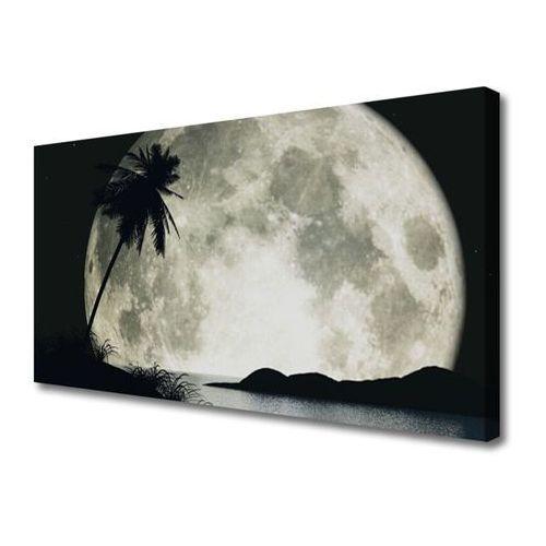 Tulup.pl Obraz na płótnie noc księżyc palma krajobraz