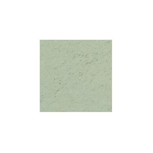 Pigment Kremer - Zieleń Veronese'a, 41700