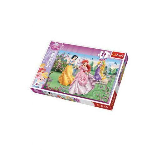 Przy fontannie. Księżniczki Puzzle Maxi, AM_5900511141351