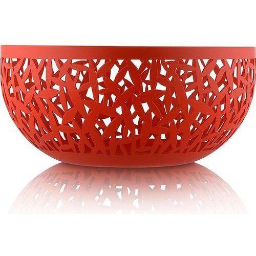 Misa na owoce Cactus! czerwona 21 cm (8003299404261)
