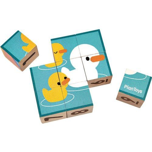 Plan toys drewniane kostki z obrazkami
