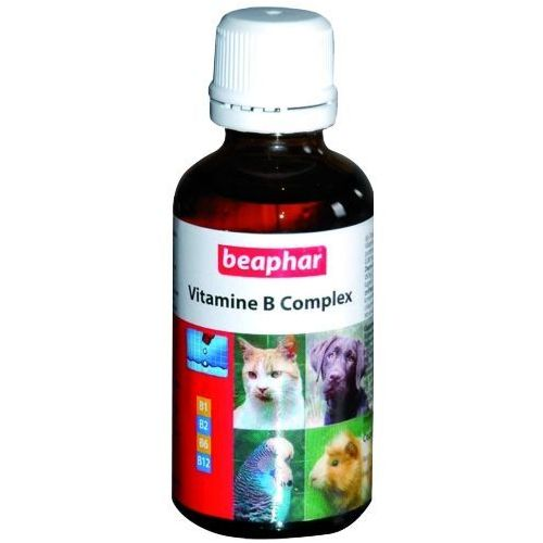 BEAPHAR Vitamin B Complex - zestaw witamin B dla zwierząt domowych 50ml